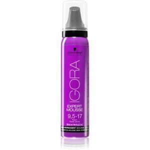 Schwarzkopf Professional IGORA Expert Mousse színező hab hajra árnyalat 9,5-17 100 ml