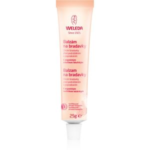 Weleda Pregnancy and Lactation 25 g