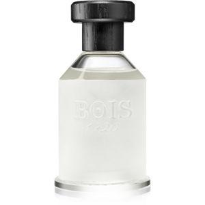 Bois 1920 Agrumi Amari di Sicilia eau de parfum unisex 100 ml