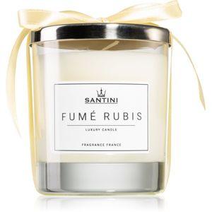 SANTINI Cosmetic Fumé Rubis illatos gyertya 220 g