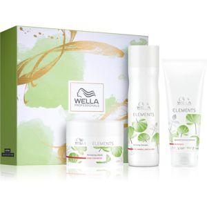 Wella Professionals Elements ajándékszett (a károsult hajra)
