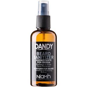 DANDY Beard Sanitizer leöblítést nem igénylő fertőtlenítő spray a haj védelmére